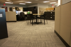 Commercial Carpets With Designs Photo - Speedwell Design Center