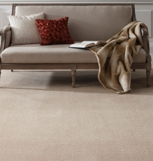 Photo Of Natural Colored Flooring With Sofa - Speedwell Design Center