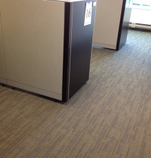 Photo Of Commercial Carpets In Office Building - Speedwell Design Center