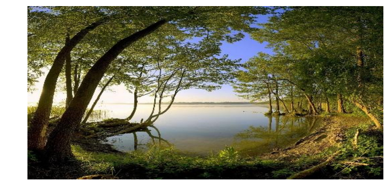 Image Of Lake And Trees - Speedwell Design Center - New Jersey